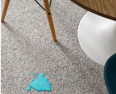 Carpet care | The Flooring Place