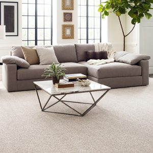 White carpet in living room | The Flooring Place