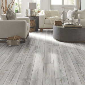 Traditions shaw tile | The Flooring Place