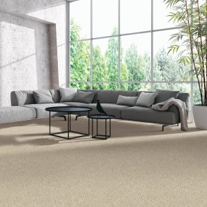 beige carpet in living area with large windows | The Flooring Place