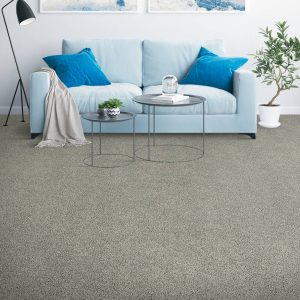 carpet with blue couch | The Flooring Place