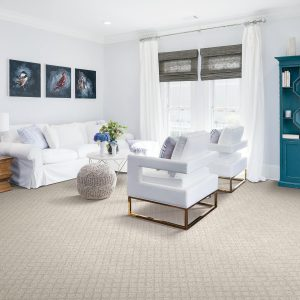 carpet in living room | The Flooring Place